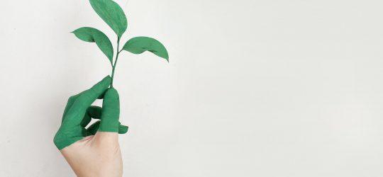 környezetvédelem illusztráció